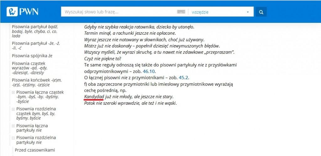 słownik pwn kandydad